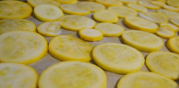 07.15.13 Squash chips
