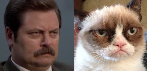 Ron Swanson and Grumpy Cat