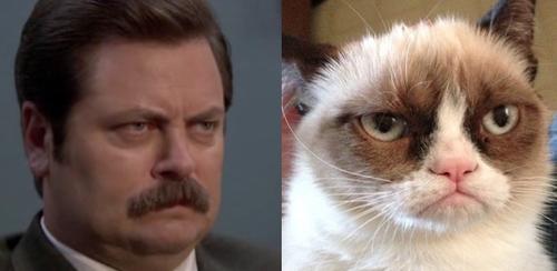 Ron Swanson and Grumpy Cat